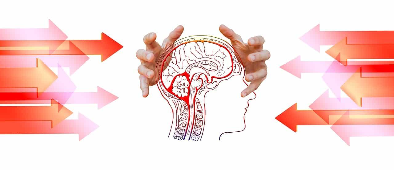 שליטה במוח