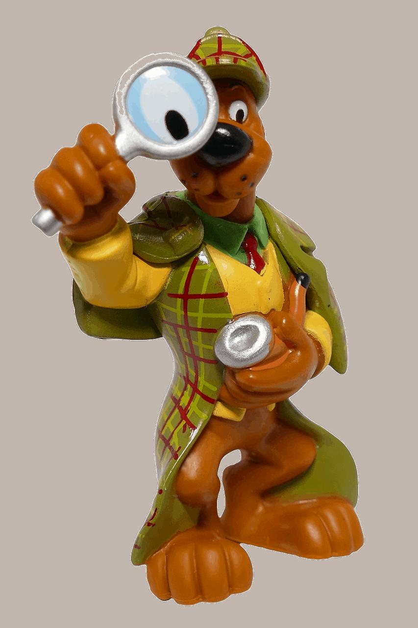 דובי חוקר