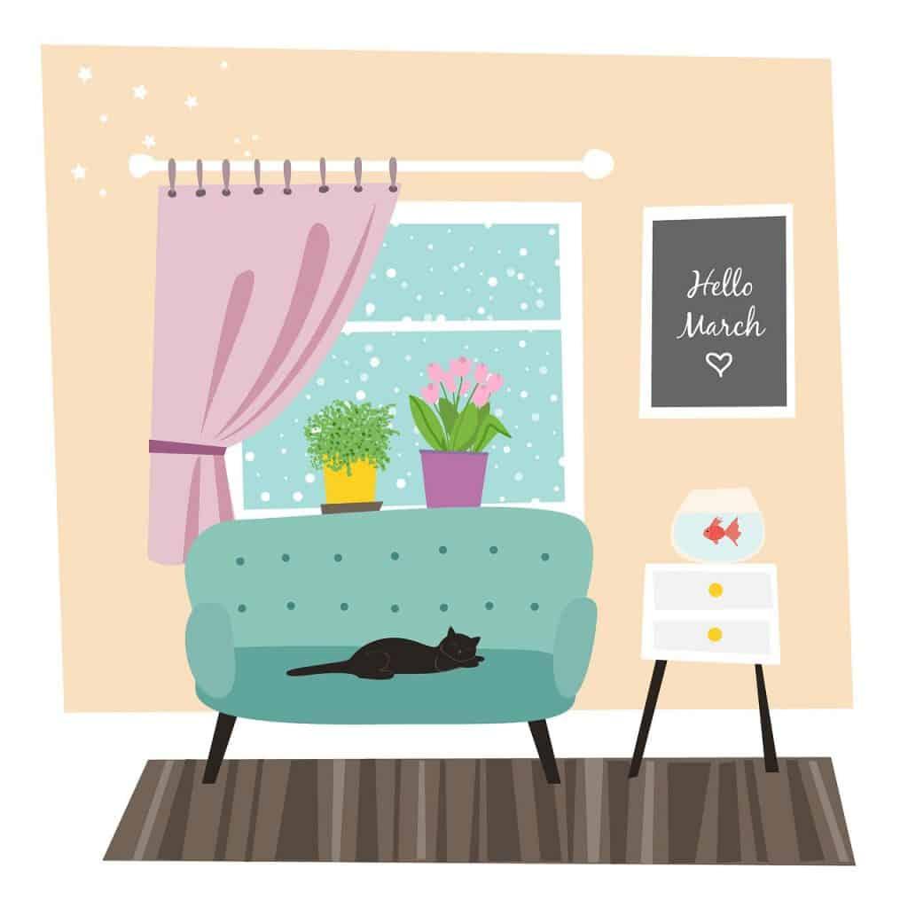 חתול על ספה בסלון